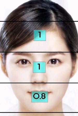 얼굴비율 - Google 검색