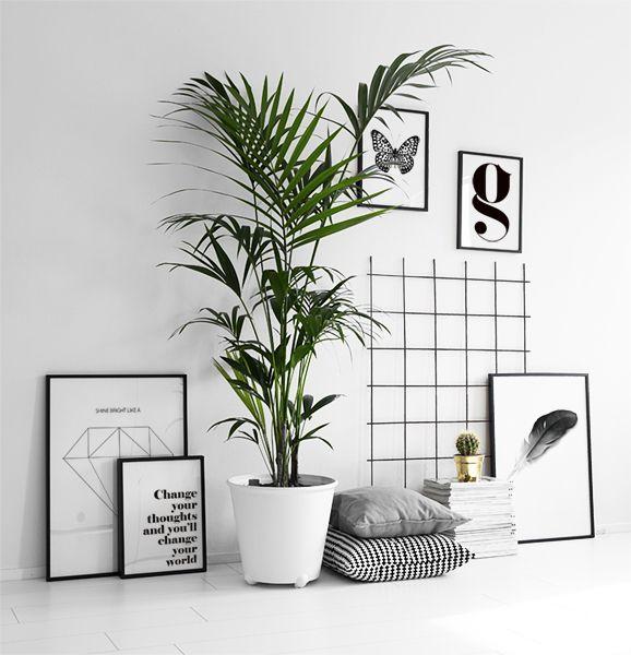 Inspiratie voor fotowanden en postercollage's
