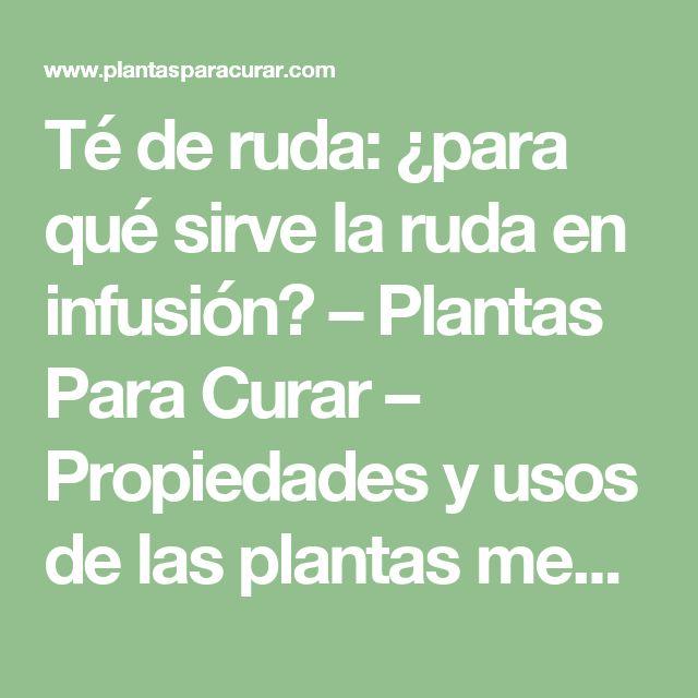 Té de ruda: ¿para qué sirve la ruda en infusión? – Plantas Para Curar – Propiedades y usos de las plantas medicinales