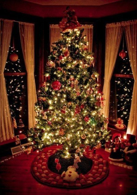 #christmastree #christmas #tree #lights #christmaslights #christmaseve #christmas #eve #night #holidays #december #winter #decor #decoration #decorations #window #windows #room #red #gifts