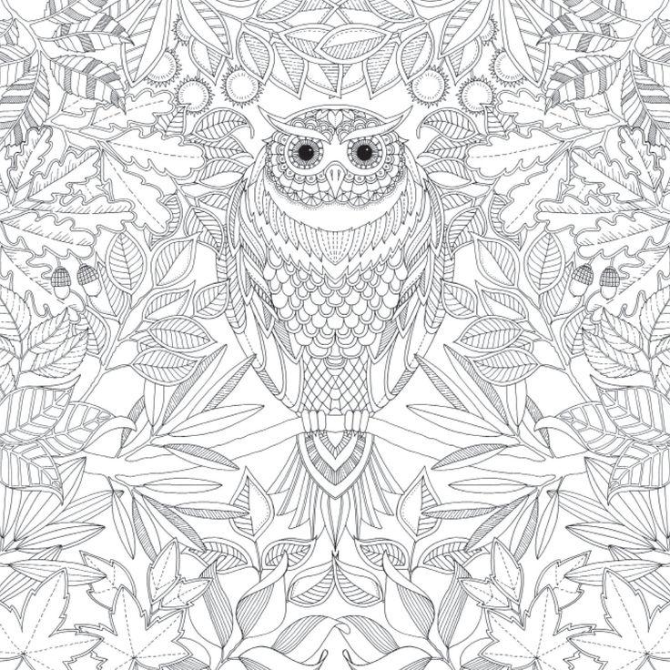 1000 images about coloriages on pinterest livres for Au jardin secret de tadine