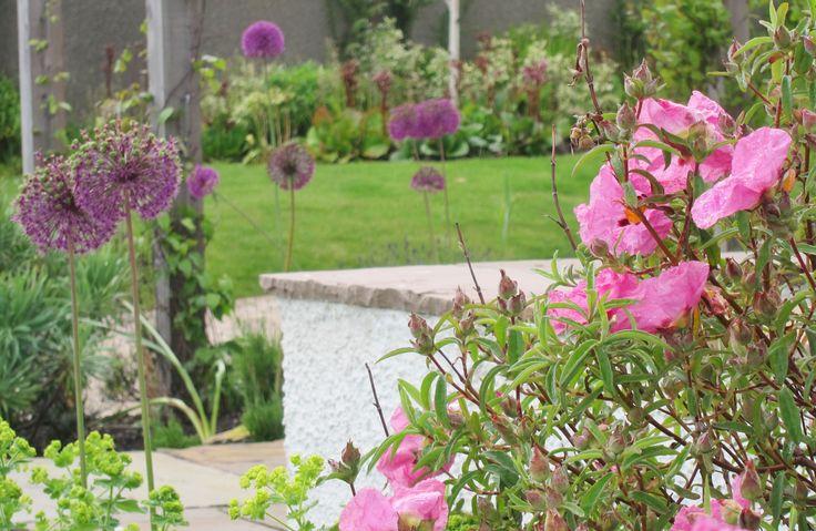 202 best gardens by goose green design images on pinterest for Garden design east lothian