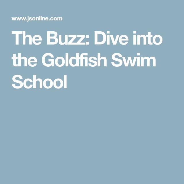 The Buzz: Dive into the Goldfish Swim School