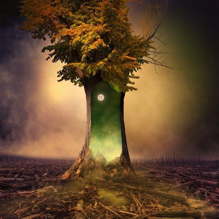 Дню, сюрреалистические картинки деревьев