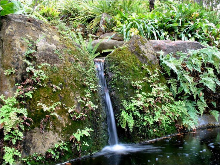 Best 25 Small Waterfall Ideas On Pinterest Diy