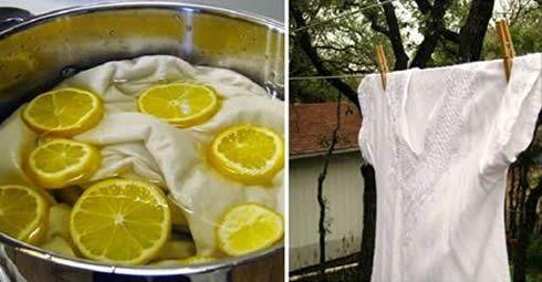 I prodotti chimici che spesso usiamo per sbiancare il bucato possono essere molto dannosi per [Leggi Tutto...]