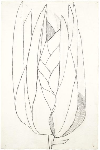 Louise Bourgeois, Untitled, 1949 – Ink and pencil on paper, 49 x 32 cm