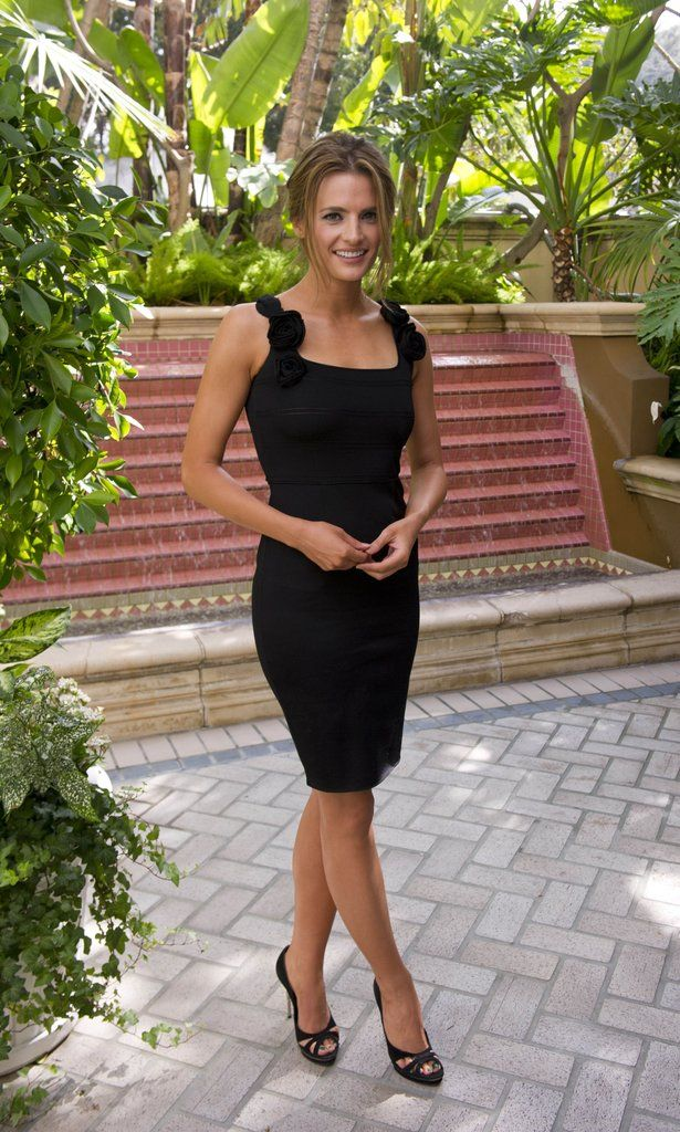 Stana Katic curves in a little black dress