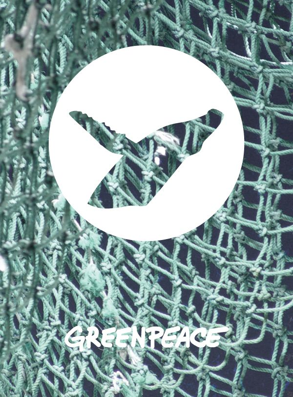 greenpeace whale