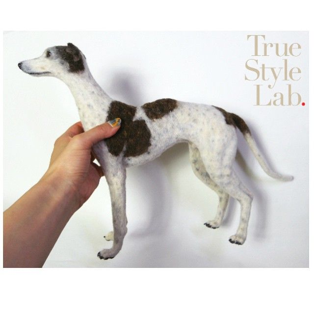 Finally done my latest commission work! #needlefelt #greyhound #lifelike #羊毛フェルト #グレイハウンド #realistic #dog #art #handmade #needlefelting More images please come to my FB page! https://www.facebook.com/TrueStyleLab