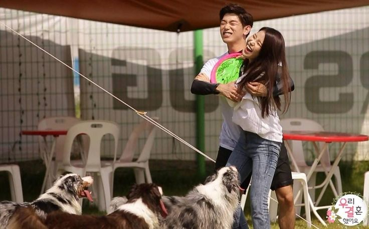 Eric Nam and MAMAMOO's Solar look after Nicole's dogs on 'We Got Married' | http://www.allkpop.com/article/2016/08/eric-nam-and-mamamoos-solar-look-after-nicoles-dogs-on-we-got-married #ericnam #mamamoo #solar #nicole #wegotmarried