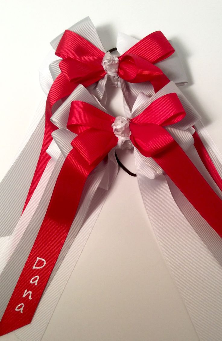 $25 Personalized Horse Show Hair Bow Sets