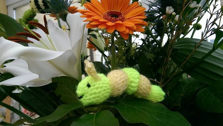 Happy Caterpillar, cute hand knitted toy