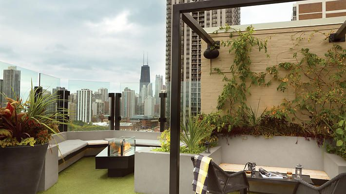 Hotel Lincoln, a Joie de Vivre Hotel | Hotels in Lincoln Park, Chicago