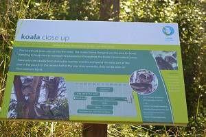 sign at the koala park on phillip island