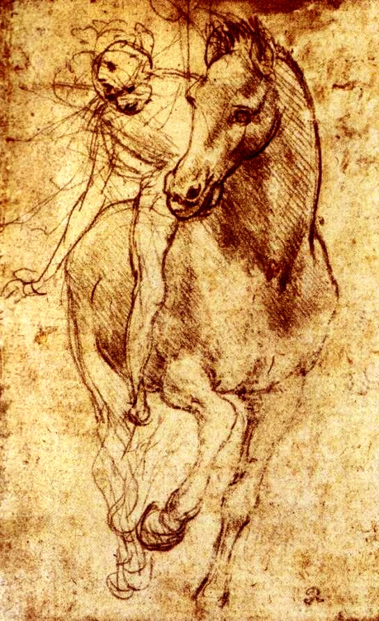 868 best Da Vinci drawings images on Pinterest | Drawings, Sketches ...