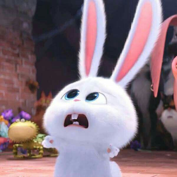 Life Of Pets Rabbit