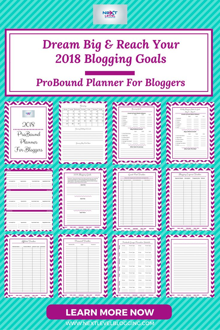 Planner For Bloggers | Blogging Goals | New Blogger Tips | Reach your blogging goals with this planner for bloggers. Monthly, weekly, and daily goal setting, plus Facebook group tracker, tribe tracker, password tracker, affiliate tracker, and more, all in this printable planner for bloggers. #planner #bloggerlife #blogtrendalert