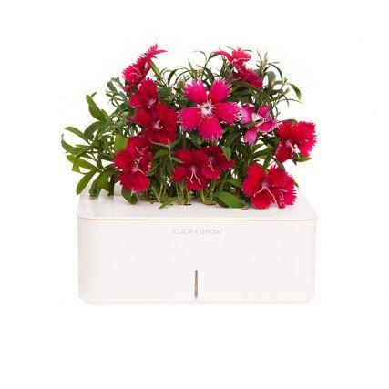 Идея для подарка: Смартпот Click and Grow  Состоит из дизайнерского контейнера, в котором уже есть все для роста растений – удобрения, система орошения, и программное обеспечение, создающее идеальные условия для роста. Нужно только вставить картридж с выбранными семенами!  #подарок #девушка #цветы #дом #декор #8марта