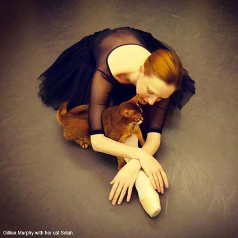 Gillian Murphy, principal dancer with ABT and her cat, Selah.  American Ballet Theatre's photo.