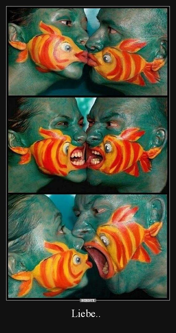 Liebe..   Lustige Bilder, Sprüche, Witze, echt lustig