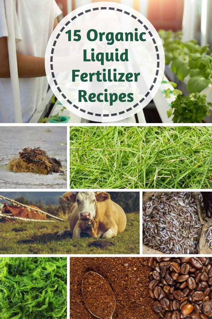 15-Organic-Liquid-Fertilizer-Recipes