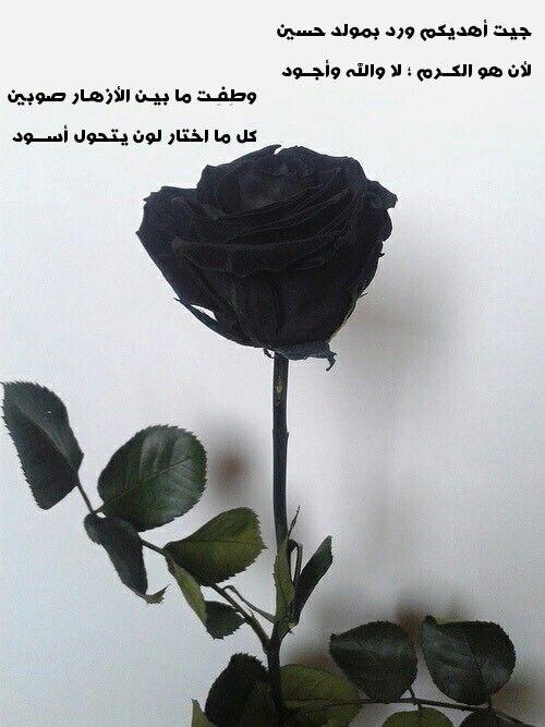 يا حسين ، iman hussein , shia poem, shiaa