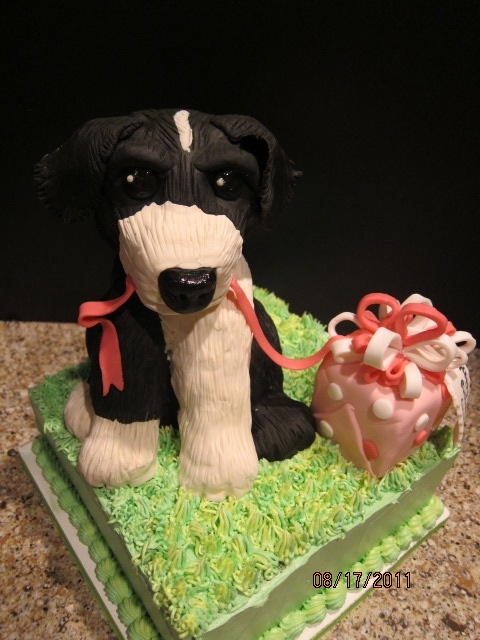 Border Collie Cake By Grace G Cakes My Cakes Pinterest