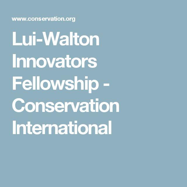 Lui-Walton Innovators Fellowship- Conservation International