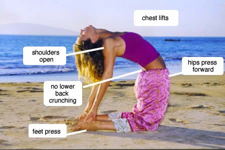 17 Best images about Camel pose on Pinterest   Yoga poses ...