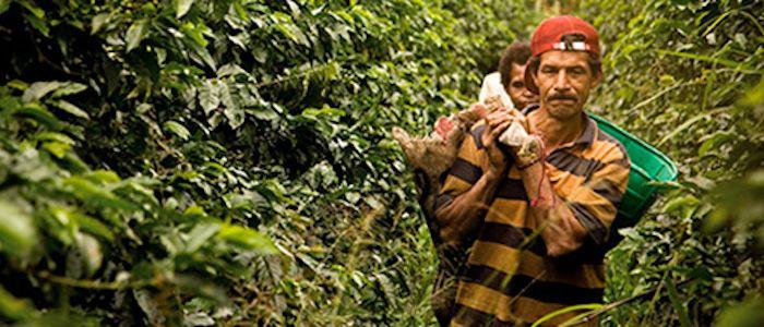 Problema Agrario en Colombia, punto fundamental del libro escrito por Catherine LeGrand. 06/03/17