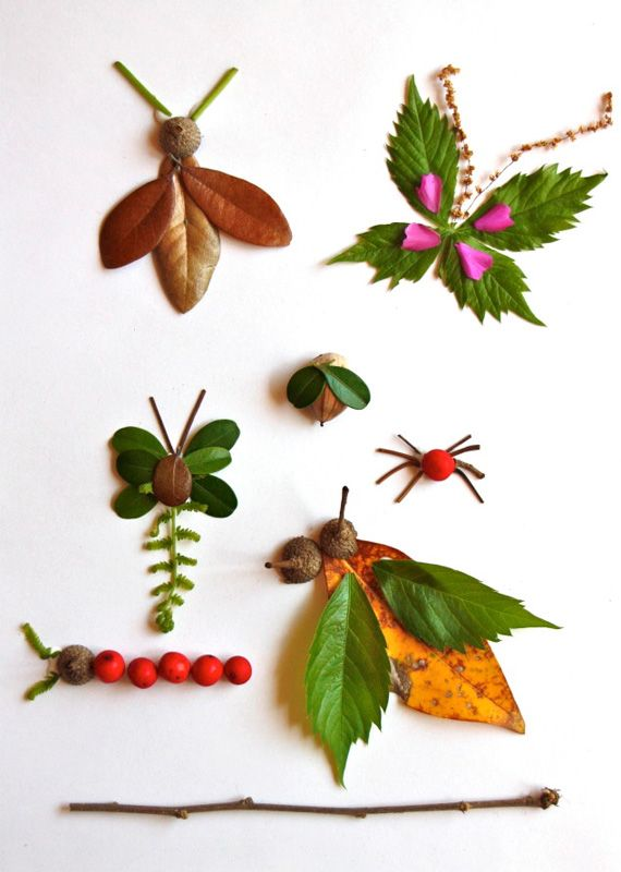 Nature elements bugs, we are so doing this when our leaves change colors