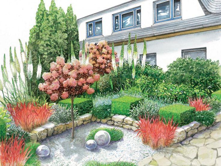 Die besten 25+ Perückenstrauch Ideen auf Pinterest Bonsai - garten und landschaftsbau vorher nachher