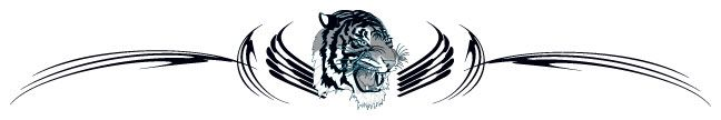 Tribal Tiger Band Tattoo #t4aw #tribal #tiger #band #tattoo