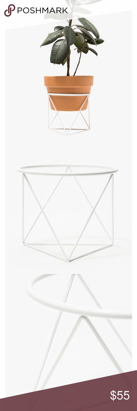 Octahedron Ring Planter Short Short plant stand in White spray. Powder coated steel. Opening fits standard 10-inch terra cotta pot. Designed for indoor/outdoor use. Anthropologie Accessories