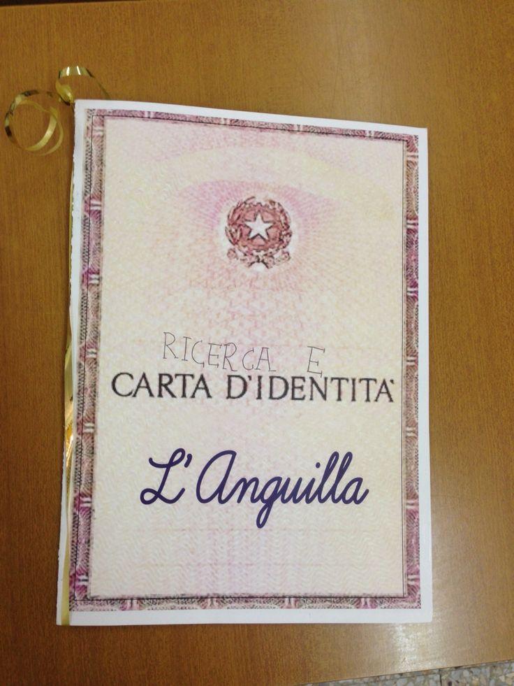 Carta identità dell'anguilla