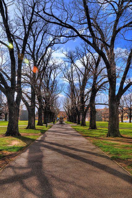 University of Melbourne: University Square by SSNNYY, via Flickr