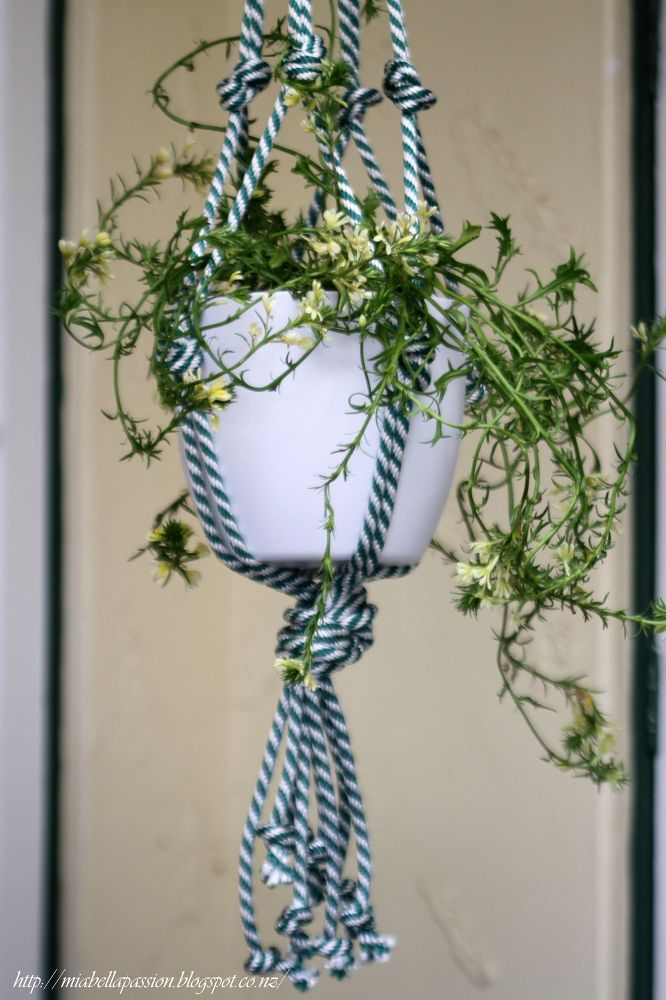 DIY+Chunky+Rope+Pot+Plant+Hanger...