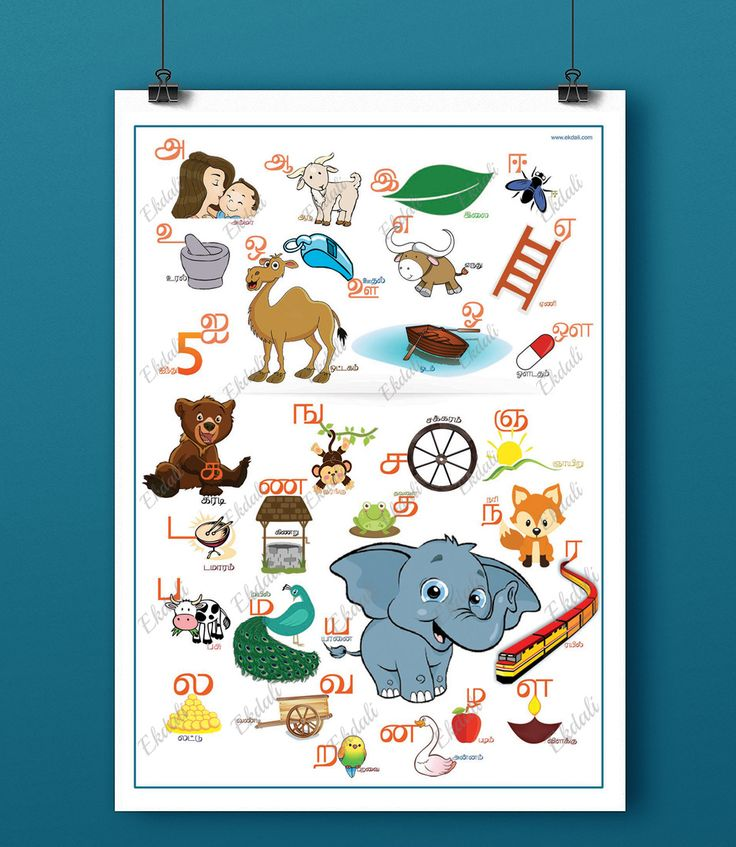 Most of us are multi lingual, knowing atleast 2 to 3 languages. Growing up outside our native places, it becomes difficult to teach our native language to the child. Use this poster as an aid to teach your child Tamil Alphabets  #tamil #alphabets #kids #rooms #wall decor #ekdali #tamilnadu #posters #charts #kids