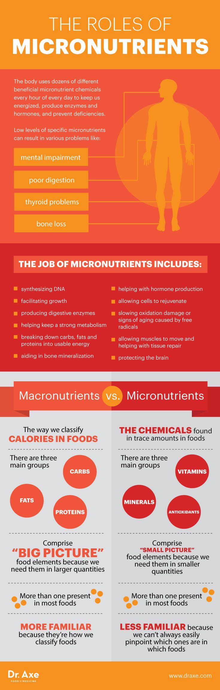 Micronutrients are essential because they protect our bodies from disease, slow the aging process and help every system in our bodies properly function. Micronutrients Prevent Disease & Fight Aging - Dr. Axe