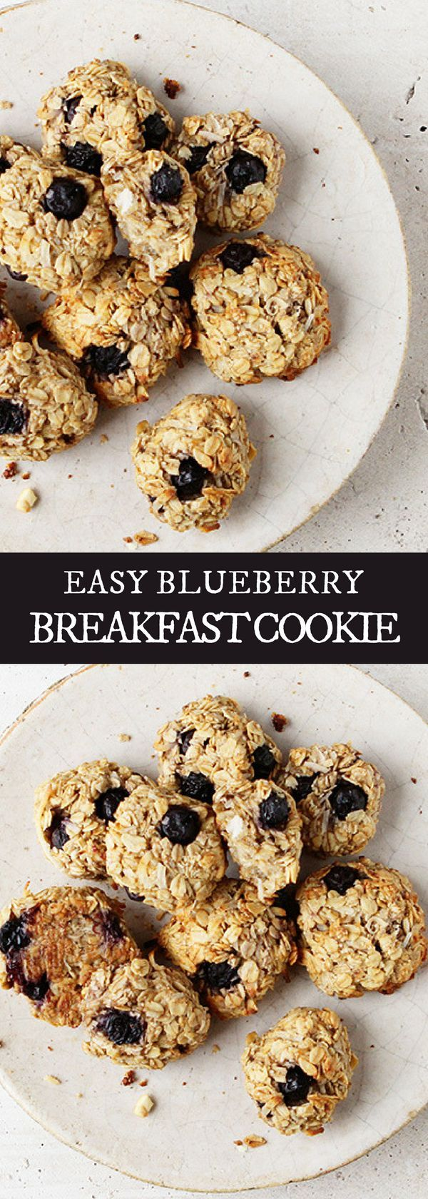 EASY BLUEBERRY BREAKFAST COOKIE | If you're looking for easy breakfast recipes, this blueberry breakfast cookie is perfect for you! Delicious, easy, healthy and full of flavor! Check us out @iamhomesteader for more healthy homemade cooking and easy homesteading recipes you can do at home.  #Homestead #homesteading #food #healthyrecipes #healthy #recipeoftheday #recipeideas