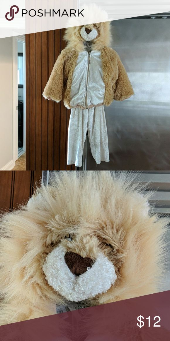 Lion costume Unisex lion Halloween costume size small. Pants with 12 inch inseam...