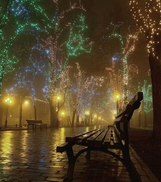 Stunning Christmas Light Display - Blues, Greens and Clear