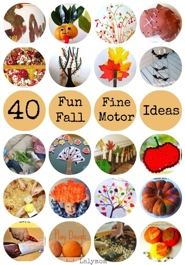 17 Best images about Fall and Harvest Theme for Preschool and ...
