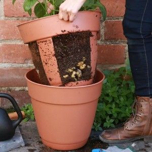 via Nifty Outdoors (LIKE our new page!)This easy-harvest potato planter is perfe…