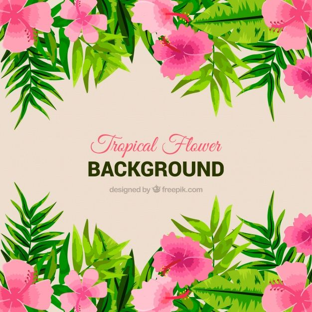 Background of pink flowers and leaves #Free #Vector  #Background #Flower #Floral #Flowers #Nature #Floralbackground #Pink #Leaves #Tropical #Backdrop #Plant #Flowerbackground #Natural #Naturebackground #Palm #Blossom #Beautiful #Tropicalflowers #Wild #Backgroundflowers