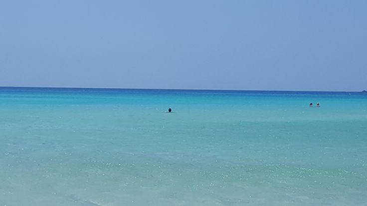 The amaizing blue sea at the shore of Falassarna, in Crete, Greece #trivo
