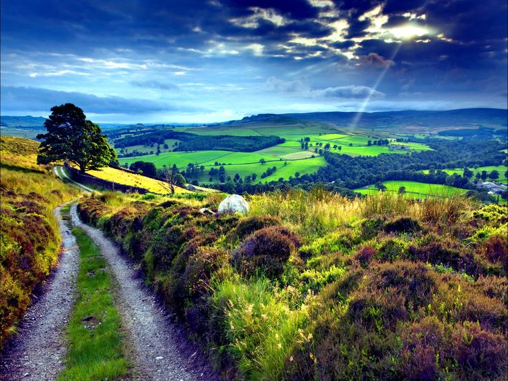 Nature Landscapes Other Countryside Path Wallpapers Unit