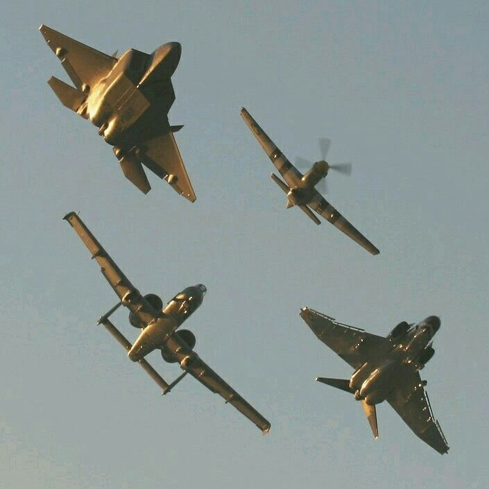 F22 Raptor, A10 Warthog, P51 Mustang, and F4 Phantom