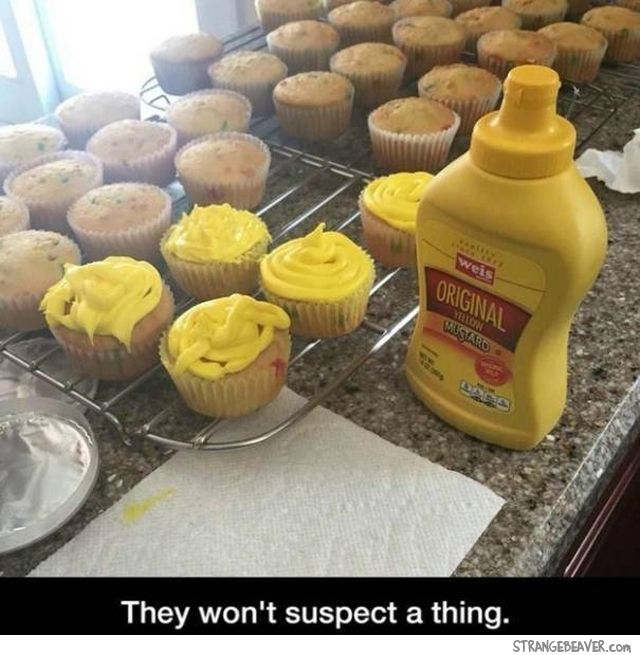 Simple Kitchen Pranks best 25+ good pranks ideas on pinterest | good april fools pranks